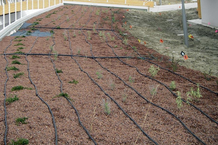 Irrigazione a goccia gaiotto impianti for Impianto irrigazione vasi